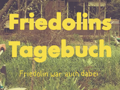 Friedolins Tagebuch